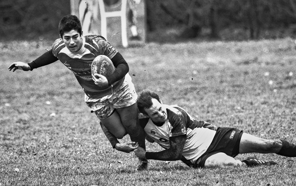 Rugby Rückblick 2015